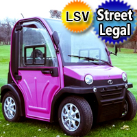 Two Passenger Electric LSV Street Legal Low Speed Vehicle