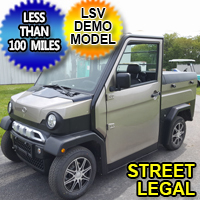 Two Passenger Electric Truck LSV Low Speed Vehicle Street Legal