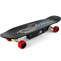 High Quality 250 Watt Electric Skateboard