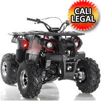 "125cc Focus ATV Apollo Series Fully Auto w/Reverse & Big 19""/18"" Wheels! - FOCUS 10 DLX 125cc"