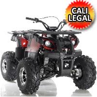 """125cc Focus ATV Apollo Series Fully Auto w/Reverse & Big 19""""/18"""" Wheels! - FOCUS 10 DLX 125cc"""