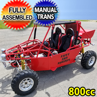 Brand New 2008 2 Person All Terrain 800cc Dune Buggy Go Kart