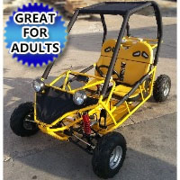 125cc Fully Automatic with Reverse Go Kart
