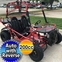 200cc Fully Automatic Go Kart - Great for Adults & Juniors