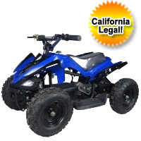 350w 24v Electric Quad ATV