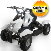 Brand New 350w 24v Gobi Electric ATV Quad