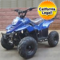 110cc Spider-SE Fully Auto ATV