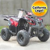 110cc Type X-SE ATV