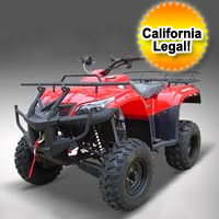 250cc LG Enforcer Utility ATV - Liquid Cooled