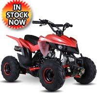 110 Atv Fully Automatic Mini Size Sport 107cc ATV 4 Wheeler - KD-110A-1