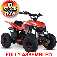 110 Atv Fully Automatic Mini Size Sport 107cc ATV 4 Wheeler - KD-110A-1