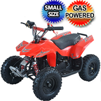 50cc Kids Atv Gas Powered Quad 4 Wheeler Fully Automatic - LY-ATV-40A