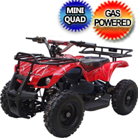 50cc Kids Atv Gas Powered Four Wheeler Quad Fully Automatic - LY-ATV-40D