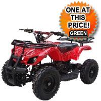 350w 24v Taurus Electric ATV Quad