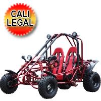 200cc Go Kart Adult Targa 4 Stroke Go Kart