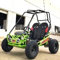 200 Go Kart TrailMaster XRX-R+ Automatic w/Reverse Go Kart Mini Size 170cc