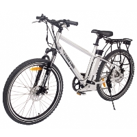300 Watt Electric Bicycle