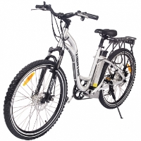 300 Watt Step Through Electric Mountain Bike with PAS