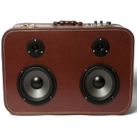 Boom Box Boom Suit Case Ginger Red Speaker Traincase Rechargeable Bluetooth Suitcase