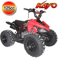 Predator 125cc Mid Size Semi Auto ATV Four Wheeler - PAK125-1