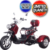 50cc Scooter Trike Ice Bear Pluto 3 Wheeler PST50-5