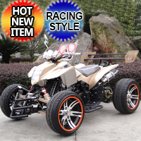 250cc Four Wheeler ATV 4 Speed Manual With Reverse - JEA-21A-08-14-250A
