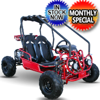 125cc Go Kart - Automatic With Reverse W/Lights - Model 125GKG