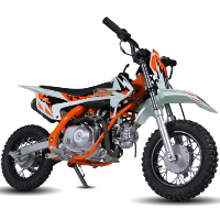 90cc Dirt Bike 4 Speed Manual Dirt Bike - PRO-X 90cc (XB-27)