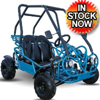 125cc Go Kart - 3 Speed Manual Dune Buggy - KD 125FM5