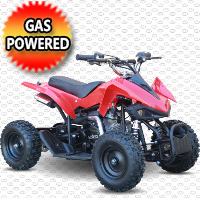 50cc Gas Sport Atv Quad With Electric Start & Throttle Limiter W/ 58cc Motor & Remote Kill- Model 6B