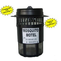 Brand New Mosquito Motel