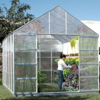High Quality 10' x 12' Greenhouse Green Garden House w/ Polycarbonate Panels