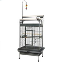40x31x70 BKV DD-Ladder Bird CG