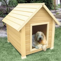 High Quality Medium Size Bunkhouse Style Dog House