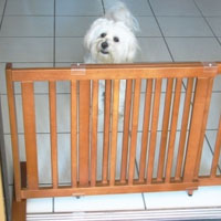 High Quality Small All Wood 21 Inch Freestanding Pet Gates