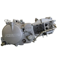 Brand New Piranha 160cc Complete Engine