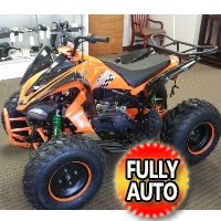 169cc ATV 4 Stroke Air Cooled Single Cylinder Sport Atv - 200DFAVB