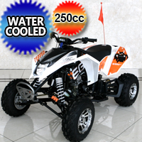 Mad Max 250cc Atv Quad Four Wheeler - Water Cooled Manual 4 Speed Neutral With Reverse