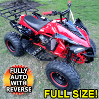 150cc Blizzard Sport Atv - Fully Automatic With Reverse
