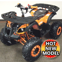 125cc Utility Quad Electric Start Fully Auto w/Reverse ATV - Mini Desert