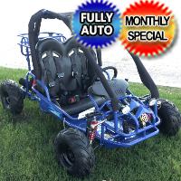 110cc Gator Go Kart New TK110 110cc 4 Stroke Go Cart - TK110GK-2