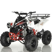 125cc ATV 4 Stroke Single Cyclinder Fully Automatic - ATV-121-125