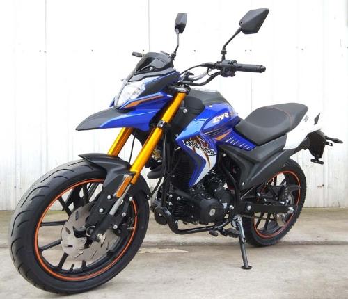 250cc Sportsman 4 Stroke 5 Speed Manual Dirt Bike Motorcycle - DB-47-250