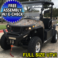250cc EFI Freedom UTV Utility Vehicle 2x4 With Roof - Fuel Injected