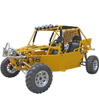 800cc 2 Person All Terrain Dune Buggy Go Kart