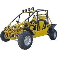 800cc 4 Stroke Dune Buggy Go Kart
