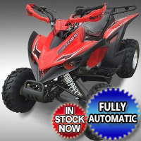 200cc ATV 4 Stroke Single Cylinder Air Cooled ATV
