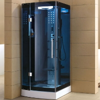 Mesa WS-301/A Walk In Steam Shower Unit