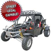 800cc Super Warrior Go Kart - Street Legal Capable!