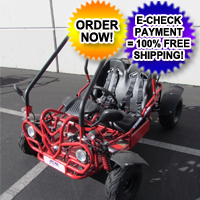 125cc Thrasher Go Kart with Electric Start